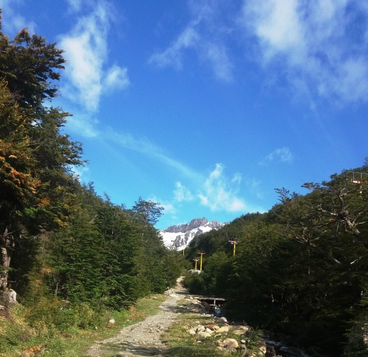 Glaciar Martial trilha